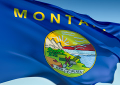 Montana Packages